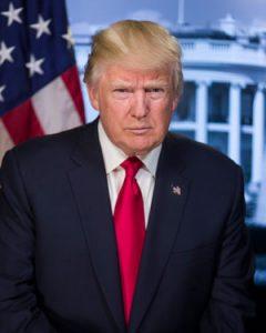 President Donald J Trump Official Portrait