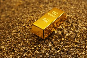 Gold on Nugget Grains