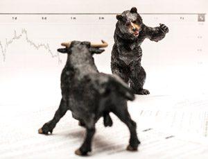 Bear fighting the bull